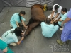 clinicadorancho005