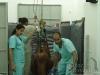 clinicadorancho075