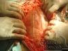 clinicadorancho080