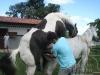 clinicadorancho179
